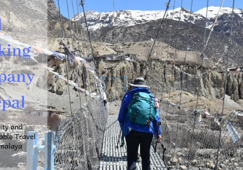 Why-trekking-company-in-nepal