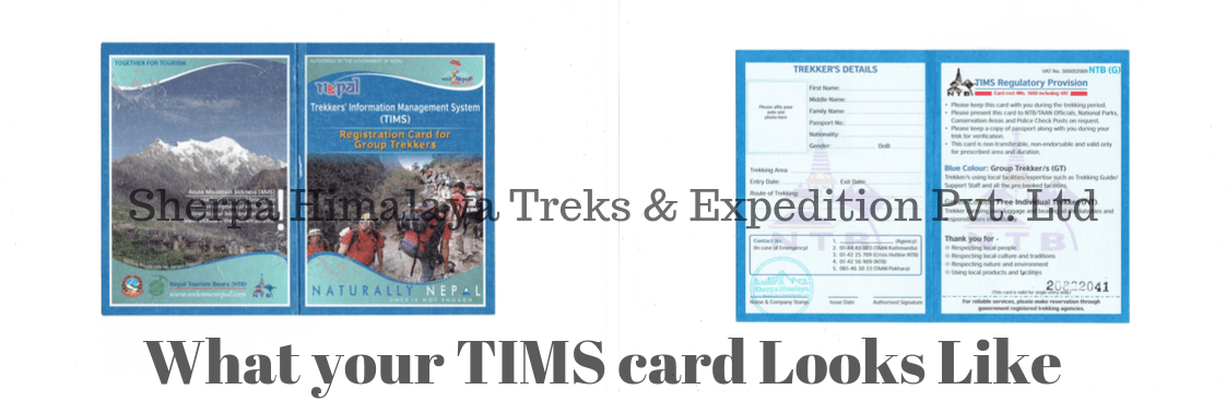 What-is-TIMS-card